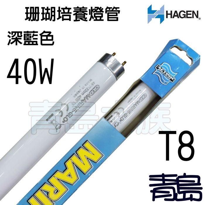 五1中0↓↓庫存品。。青島水族。。A-1607S加拿大HAGEN赫根--T8-MARINE-GLO珊瑚培養燈管==40W