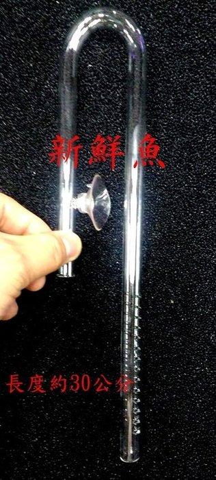 ~新鮮魚水族館~實體店面 玻璃 進水口 入水口 12/16mm 管徑 高質感 圓桶 入水管