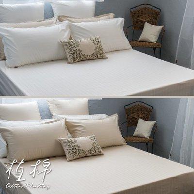 《50支紗》雙人特大床包/枕套/3件式【共2色】植棉-白、米 100%精梳棉-麗塔寢飾-