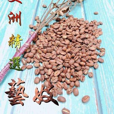 【莫瑞絲 】織夢咖啡 Knitting Dreams 美洲-精選藝妓-半磅熟豆 新鮮研磨 自家烘焙 歡迎批發零售