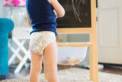 【美國直購】The Honest 環保 有機 無毒 褲型尿布 試用包5-4片裝