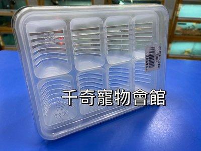 ☆千奇爬蟲☆ 爬蟲用全方位孵蛋盒C型(蛋拖)