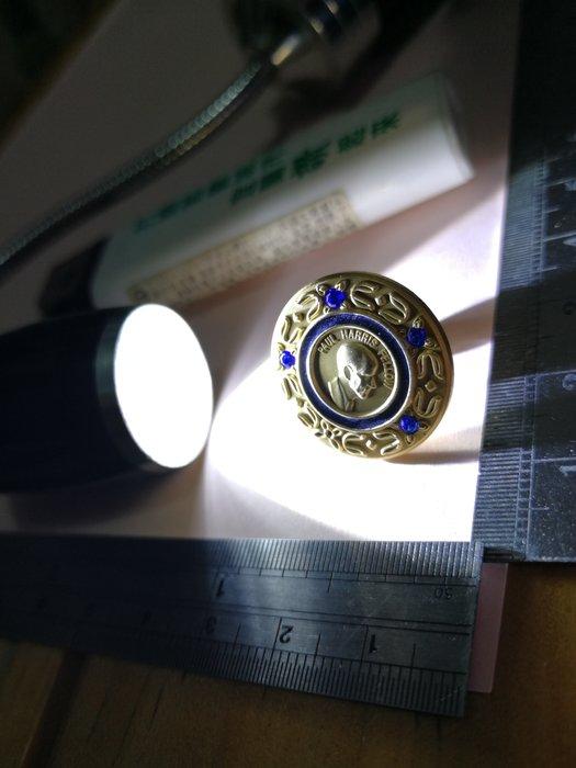 極少見 4顆藍寶石PHF+4 扶輪社保羅哈里斯之友 銘馨易拍109MG33 立體勳章徽章紀念章 保存如圖(1個ㄧ標)讓藏