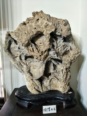 【上古奇石】早期收藏《樹葉化石》免運費