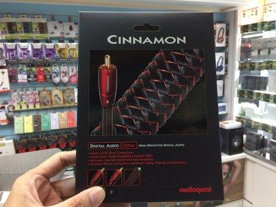 禾豐音響 公司貨 美國 Audioquest Cinnamon coax 數位同軸線 5M Focal book升級