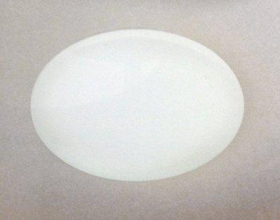 【晨新照明】BT02 LED 吸頂燈 塑料 15W 省電 浴室 廚房 陽台
