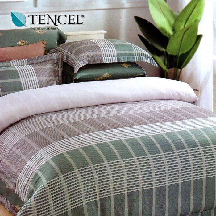 天絲床包四件式 100%頂級天絲 加大雙人6x6.2尺 鋪棉兩用被床包組 附正天絲吊卡 艾維斯【芃云生活館】