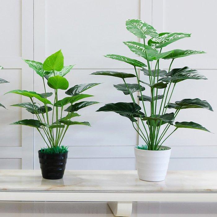 仿真花假綠植塑料紅掌假花客廳室內裝飾綠色植物落地小盆栽擺設件綠植牆仿真植物摆件牆裝飾客廳室内仿真植物盆栽