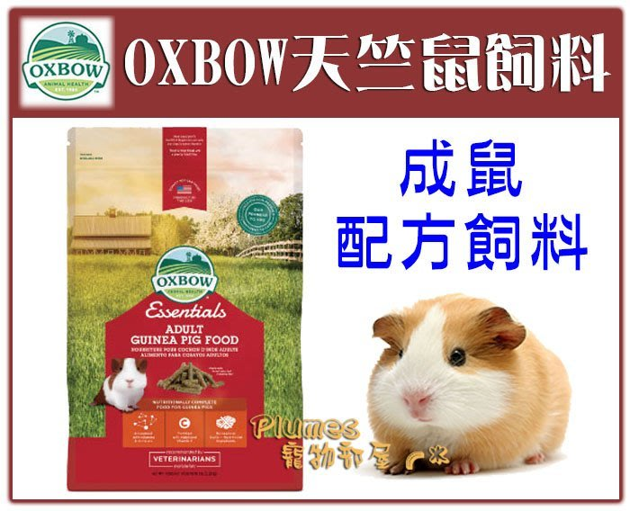 【Plumes寵物部屋】美國OXBOW《天竺鼠成鼠配方飼料》5磅-天竺鼠 成鼠飼料 鼠飼料 【可超取】