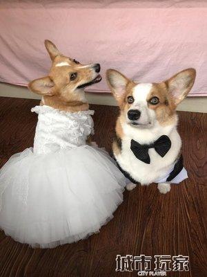 【興達生活】狗衣服 中型犬柯基可卡柴犬西服寵物狗狗西裝紳士禮服新年燕尾服`21939