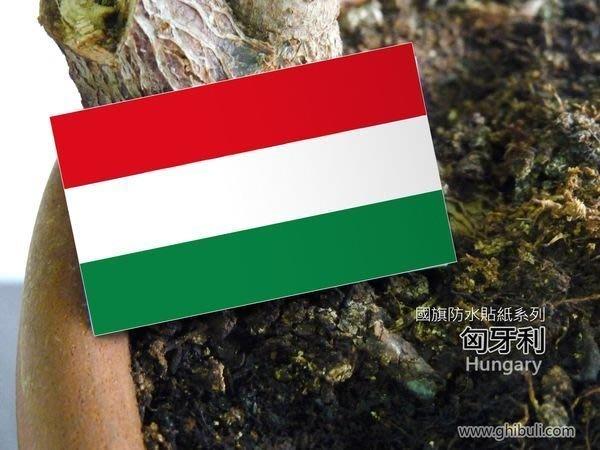 【衝浪小胖】匈牙利國旗貼紙/機車/汽車/抗UV/防水/Hungary/各國家、各尺寸均有販售