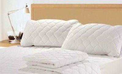 ==YvH==PillowCase 枕頭保潔墊一個 台灣製造 鋪棉車格 延長枕頭壽命 可洗衣機洗 (現貨)
