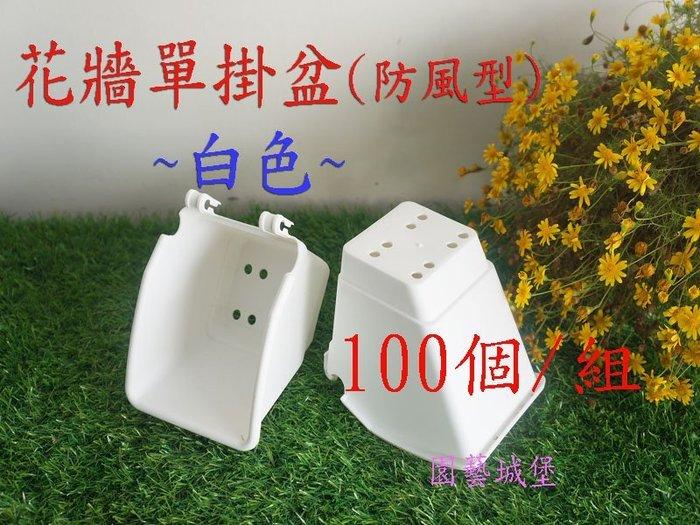 【園藝城堡】花牆單掛盆(植生牆)防風型-白色100個/組