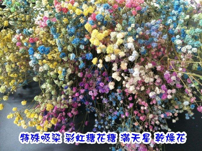 限量~超稀有~特殊吸染 進口 彩虹 棉花糖 滿天星 乾燥花 拍照道具 攝影道具 滿天星乾燥花 乾燥花材 朵希幸福烘焙