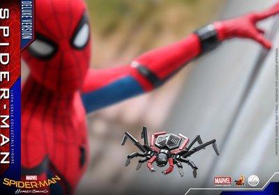2019 動漫節(27/7)訂單 HOT TOYS hottoys 1:4 spiderman deluxe 蜘蛛俠 會場特別版 QS015B