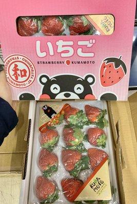 先詢問在下單-日本🇯🇵熊本八代戀草莓🍓禮盒🎁(免運)