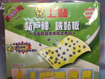 【八八八】e網購~【上黏黏蠅板5片裝 】黏蒼蠅 果蠅 果園 果樹