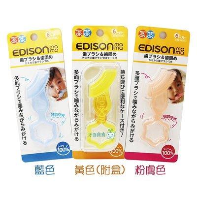 牙齒寶寶 日本 EDISON MAMA 嬰兒口腔期 矽膠固齒器 一入