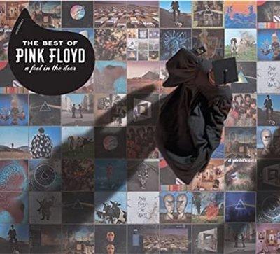 The Best of Pink Floyd - A Feel In The Door (CD)