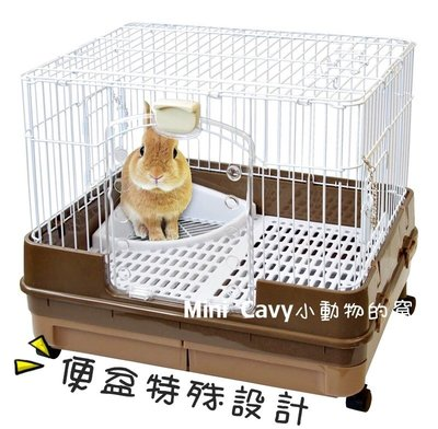 。╮♥ Mini Cavy ♥╭。日本Marukan 雙抽屜精緻便盆式兔籠 ML-99 特價