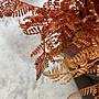 【曙muse】仿真橘色蕨類植物(三尺寸可選)  水泥盆栽 創意擺飾 Loft 工業風 咖啡廳 民宿 餐廳