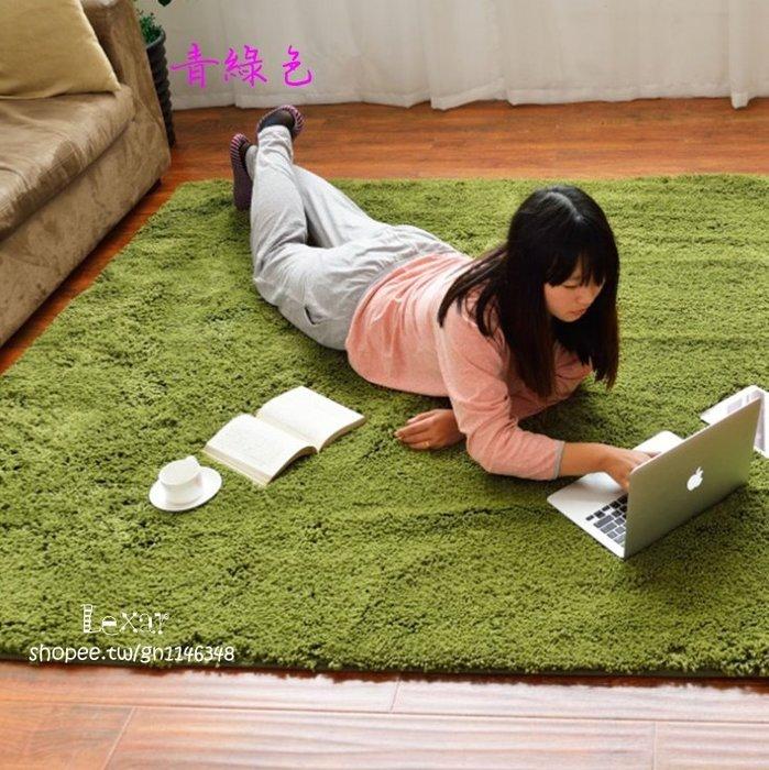 日式加厚絲毛長絨簡約現代客廳臥室茶几飄窗榻榻米床邊地毯滿鋪