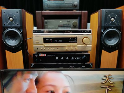 SONY DVP NS57P 高階家庭劇院影音播放機【優質美聲 歡迎試聽 】
