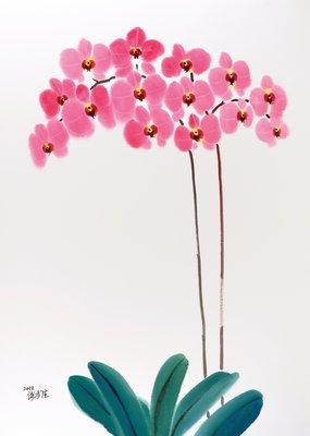 謝孝德 蘭花系列 2011 110X79cm 全開水彩 (H157桃園、客家、本土、台灣、師大、美展、藝術)