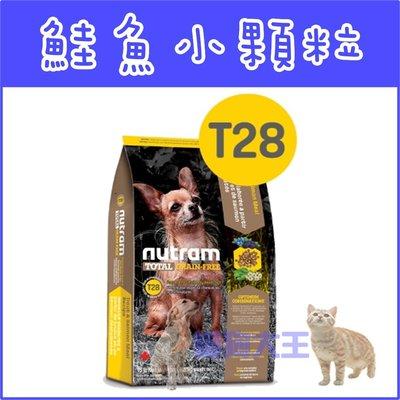 **貓狗大王**【贈100元禮卷】Nutram紐頓T28無穀迷你犬鮭魚配方犬糧----1.36公斤