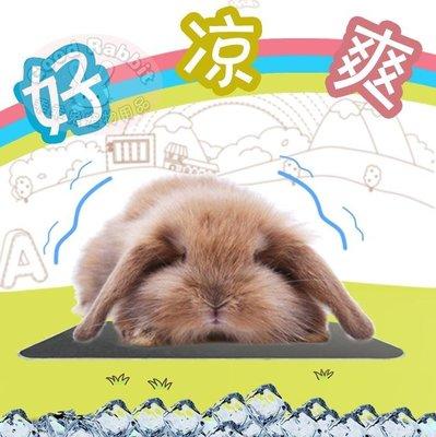 兔子用品 安吉派特小動物散熱板 龍貓兔子荷蘭豬消暑板 不銹鋼金屬消暑版-美琪的小店
