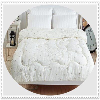 雙人棉被胎 / 台灣製造雙人6X7尺保暖透氣健康被/雙人冬被 ☆全方位寢具☆