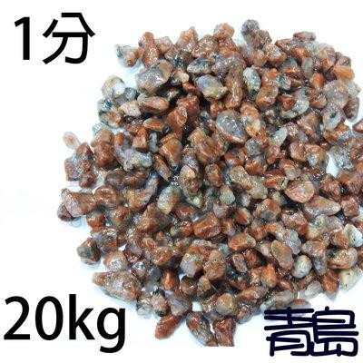 PN。。。青島水族。。。A級紅花崗(珊瑚紅石)(含水秤重)==1分-20kg(散裝) 新北市