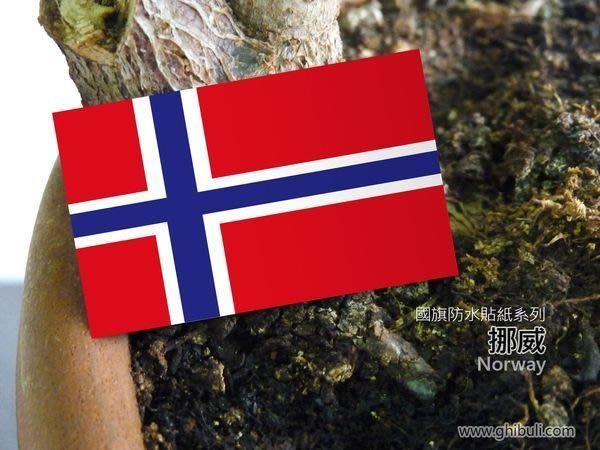 【國旗貼紙專賣店】挪威國旗旅行箱貼紙/抗UV防水/Norway/各國、多尺寸都可訂製