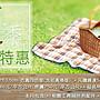 【草皮達人】人工草皮PE- 3.5cm仿真草10平方...