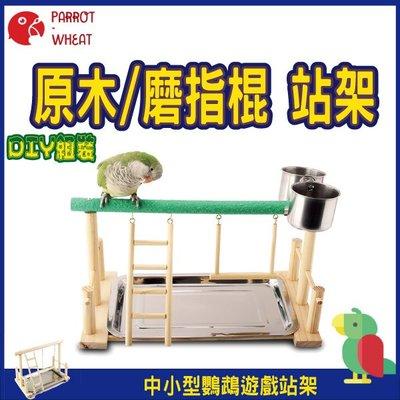 【台灣24H出貨】 中小型鸚鵡 鞦韆 爬梯 站架 桌上型站架 玄鳳 和尚 牡丹 鸚鵡玩具 鸚鵡站台