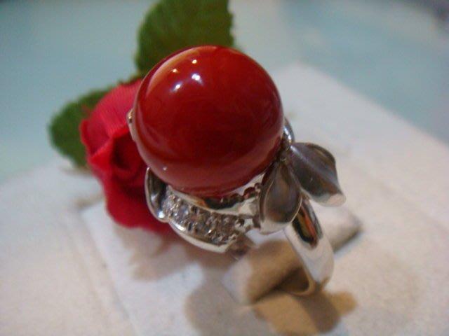 低價出售 12.5MM 頂級阿卡紅珊瑚 配鑽0.17克拉純白金鑽戒