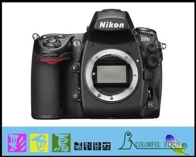 彩色鳥 (相機出租,鏡頭出租,) Nikon D750 + Nikon AF-S 60mm f2.8G 微距鏡 D800