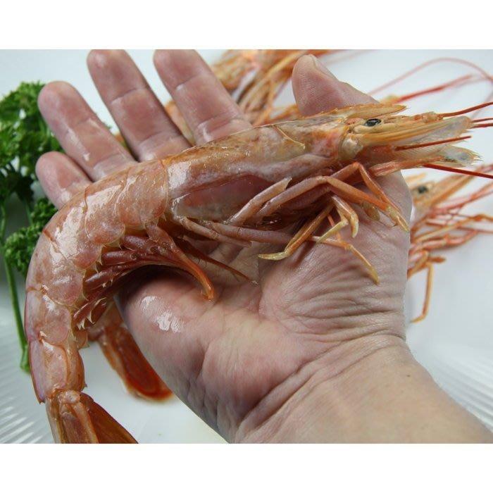 【萬象極品】阿根廷天使紅蝦(L1 10/20最大尾等級)~買整盒加運費後比Costco還便宜~生食/鹽烤/清蒸/水煮皆宜