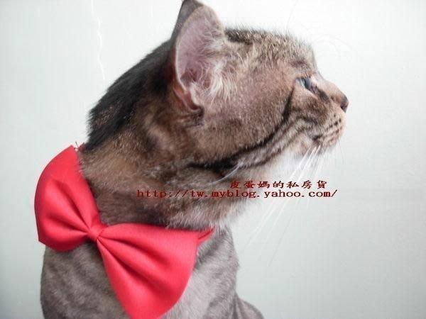 【皮蛋媽的私房貨】DEC0004 漂亮精美 寵物領結 貓咪-狗狗 小朋友- 帥氣蝴蝶結 型男啾啾 造型領巾