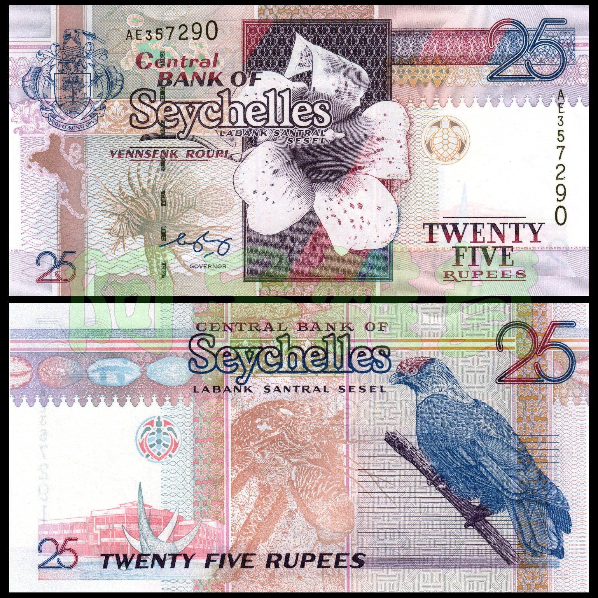森羅本舖 現貨實拍 塞席爾共和國 25元 1998年 藍鵑鵙 白槴子花 精緻 真鈔 鈔票 鈔 錢幣 紙幣 幣 塞席爾