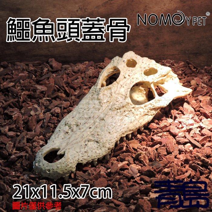 Y。。。青島水族。。。NS-72中國NOMO諾摩-骨頭 化石 躲藏棲息 造景裝飾 水族魚缸繁殖躲避==鱷魚頭蓋骨