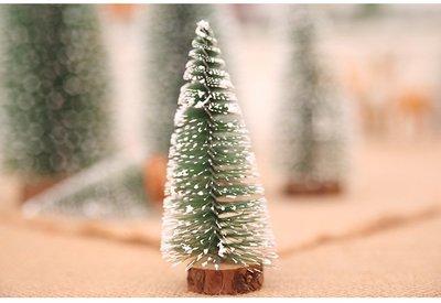 微景觀---10公分迷你可愛小聖誕樹**針葉松樹15元