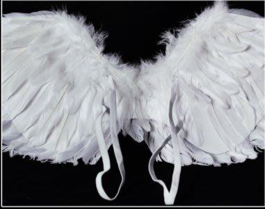 cosplay天使翅膀白色翅膀萬聖節道具新娘花童裝扮(大號羽毛翅膀)_☆優夠好SoGood☆
