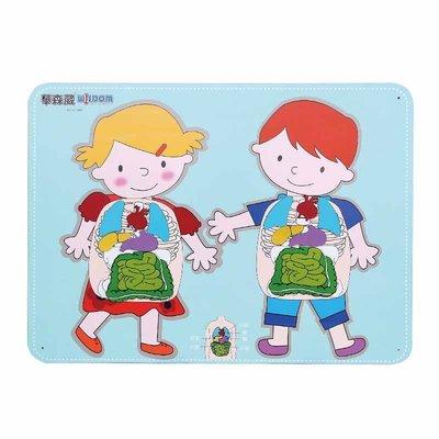 【晴晴百寶盒】 台灣品牌 牆板遊戲-身體器官 WISDOM 手眼協調 生日禮物兒童家家酒 益智遊戲玩具W938