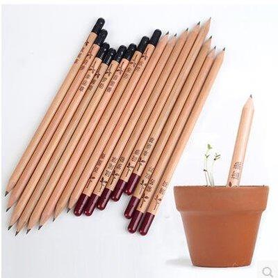 會長草的鉛筆創意禮品文創畢業禮品創意小玩意新奇特個性實用送男生女朋友生日禮物