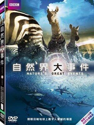 (全新未拆封)BBC自然界大事件 Nature's Great Events DVD(得利公司貨)限量特價