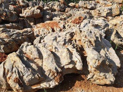 ╭☆雨過天青☆╮高級景觀石 水流石 花卉石材 玫瑰石 珊瑚砂 石片 庭園造景
