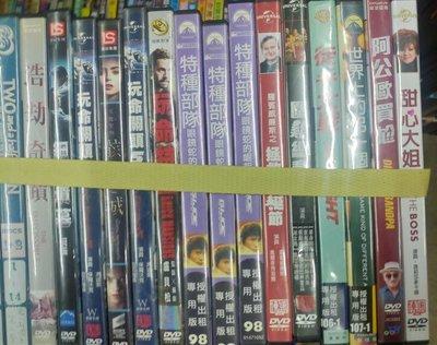 《世界上的另一個你》正版DVD ‖葛瑞肯尼爾 芮妮齊薇格 吉蒙翰蘇 強沃特【超級賣二手書】