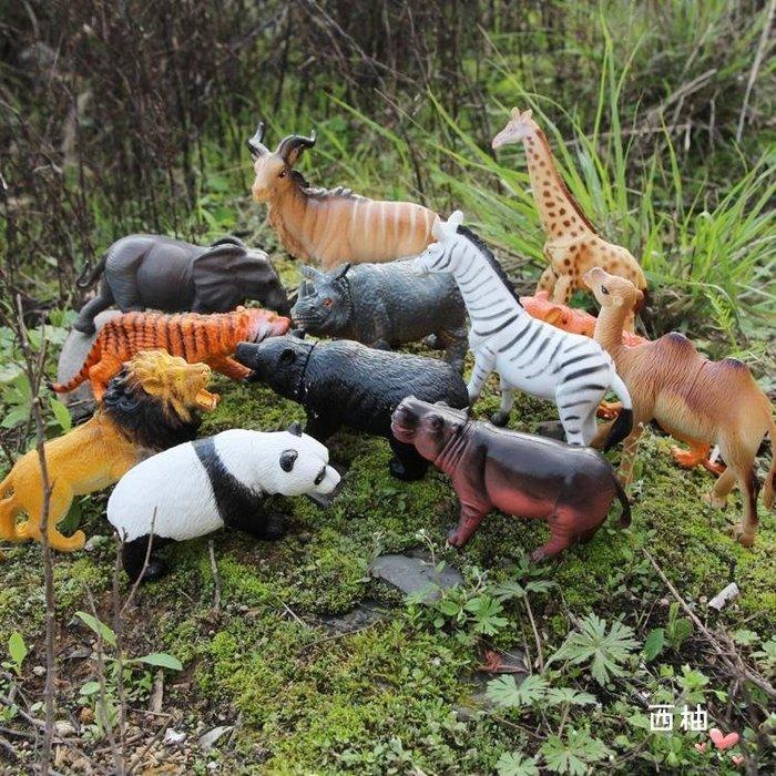 大號野生動物玩具模型12套裝野豬猩猩禮物兒童玩具
