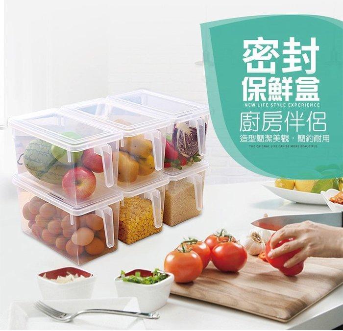 【超商限一個,買多個請使用貨運】手柄式帶蓋儲物箱 保鮮 冰箱 廚房 蔬菜 水果 甜點 點心 收納 乾糧 儲物